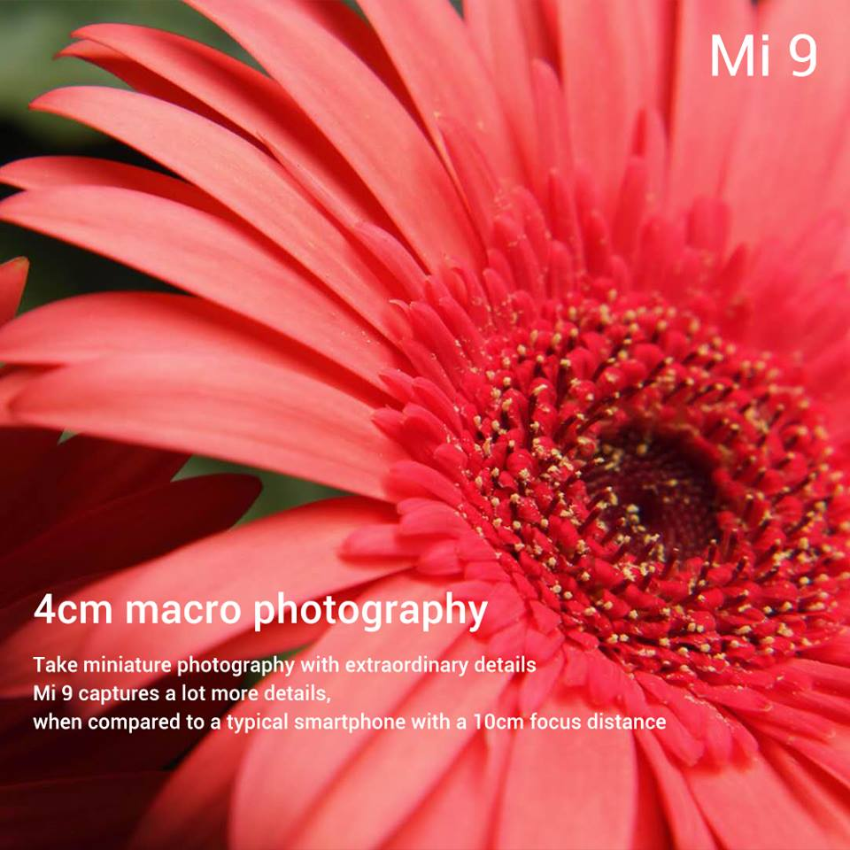 Mi9 : Les dernières infos ()
